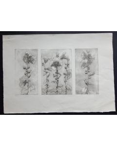Stockrosen Triptychon