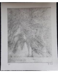Apfelbaum 3/7
