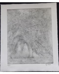 Apfelbaum 4/7