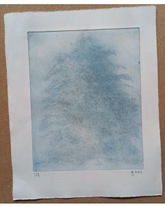 Baum im Nebel 3/4