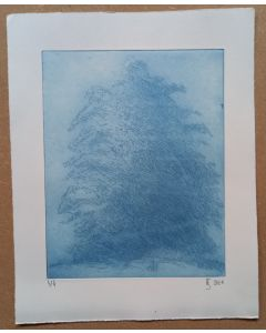Baum im Nebel 4/4